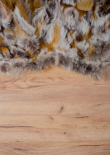 Wood Background with Fur Edge as Texture and Background for Composing Fashion Façade Underground Wall Wood Background Composing Fur Material Pattern Red Fox Structures Surface Template Texture Tiled Wood Structure Wooden Board Wooden Wall