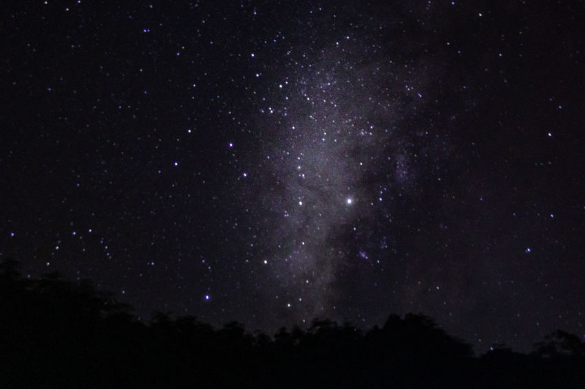 Night Space Star - Space Sky Astronomy No People Beauty In Nature Scenics - Nature Star Nature Tranquility Low Angle View Galaxy Tranquil Scene Star Field Outdoors Constellation Dark Silhouette Idyllic Milky Way