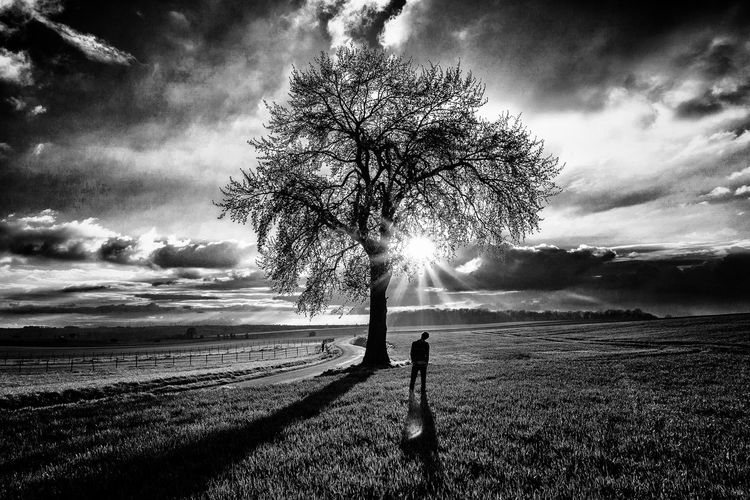 Don't see the sun directly. Beauty In Nature Man Alone Nature_collection Only Black And White Photographs Blackandwhite Alone Pixelated Tree Lightning Shadow Sky Cloud - Sky Single Tree Storm Cloud Storm Long Shadow - Shadow Countryside Silhouette Dramatic Sky Go Higher