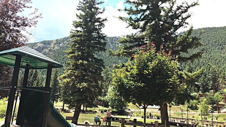 Beautiful day at the park ❤️ Tree Day Sky Growth Built Structure Outdoors Nature Architecture Real People EyeEmNewHere EyeEm Gallery EyeEmBestPics The Great Outdoors - 2017 EyeEm Awards Nature Photography Nature Mountain View Photography Eye Em Nature Lover Colorado