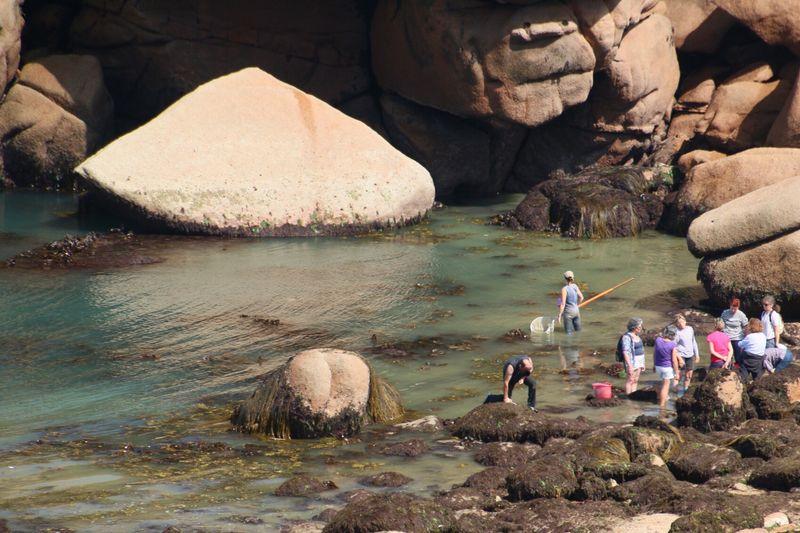 Check This Out Côtes D'Armor Bretagne Cliffs Atlantic Ocean Enjoying Life Sea Fishing Muschelsammer und Hobby-Krabbenfischer