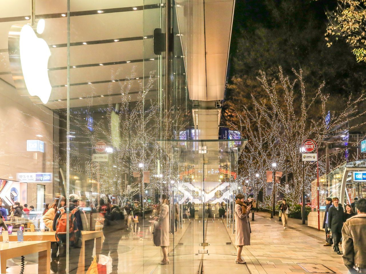 large group of people, group of people, crowd, real people, city, architecture, illuminated, men, tree, built structure, women, city life, night, walking, lifestyles, building exterior, adult, street, plant, outdoors, light