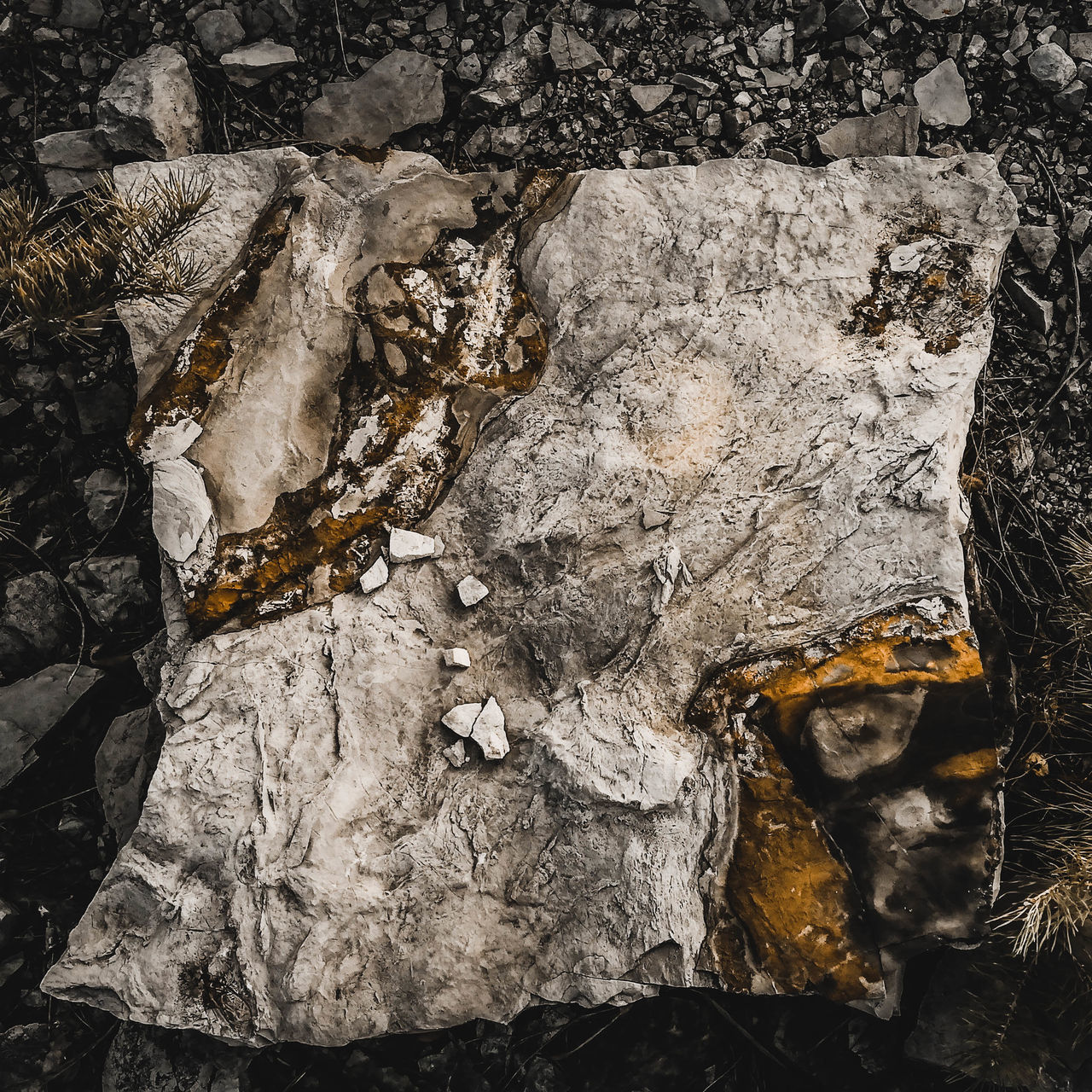 no people, day, nature, textured, outdoors, close-up, land, field, solid, rock, high angle view, burnt, rock - object, dirt, ash, full frame, dirty, animal, wood - material, wood