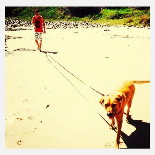 Walking Steve...