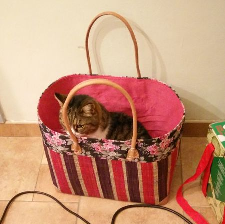 Everything Tom can, I can do better. Cat Shopping Basket Tabby Cat Bastet