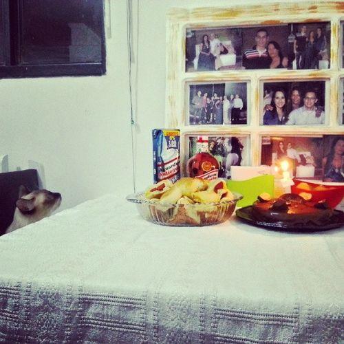 Eu acho que o gato tbm queria assoprar a vela Anivessario