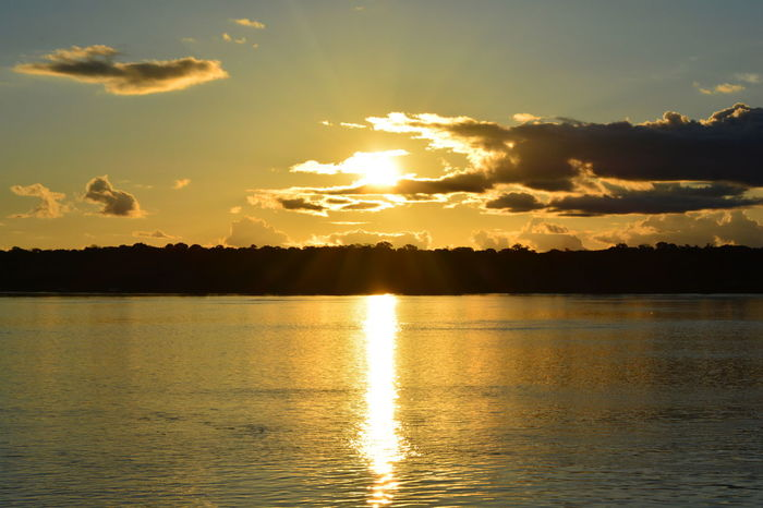 Hope for better days 🌞 Sunset Reflection Dramatic Sky Gold Colored Nature Sunlight Sun Orange Color Beauty In Nature Outdoors Tranquility Landscape Amazonian Forest Clouds Brazil Amazonia River Collection River Riomadeira Rondônia Sunrise_Collection Sunrise