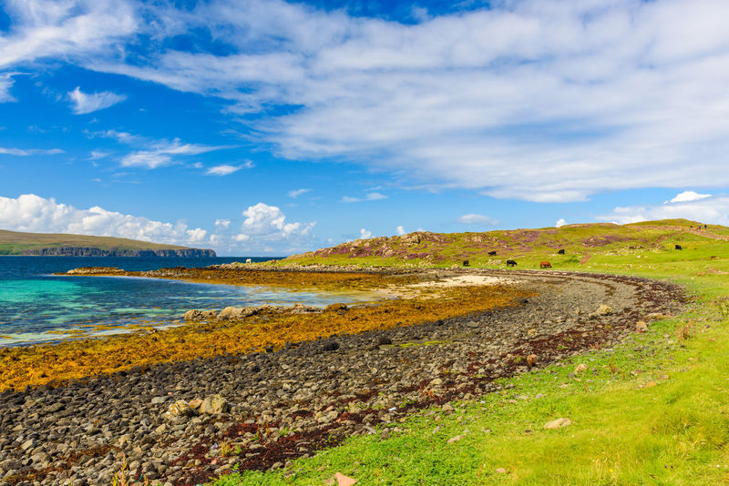 Coral Beach, Isle Of Skye Scotland Beauty In Nature Cloud - Sky Day Grass Horizon Over Water Landscape Mountain Nature No People Outdoors Scenics Sea Sky Tranquil Scene Tranquility Travel Destinations Water