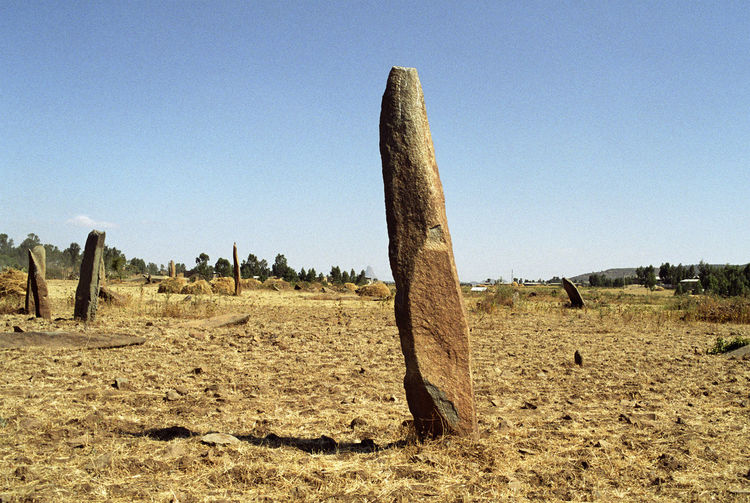 Stelae field in ancient cemetery in Aksum Ethiopia Africa Film Photography African Ancient Axum Ethiopia Africa Aksum Ancient Civilization Arid Climate Field History Landscape Monolith Neolithic No People Stelae Stone Travel Destinations