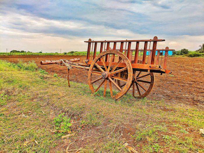 Our bullock cart. Bullock Cart Agriculture Agriculture Photography Agricultural Equipment Agriculture Machinery Farm Farmland Sky Cloud - Sky