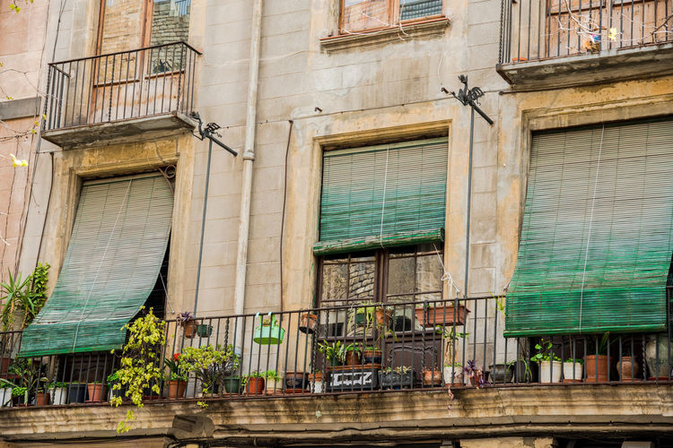 Architecture Barcelona Barcelona, Spain Façade Green Green Color Mediterranean  Apartment Architecture Balcony Building Building Exterior Built Structure City Door Entrance House Low Angle View No People Old Outdoors Plant Potted Plant Residential District Window