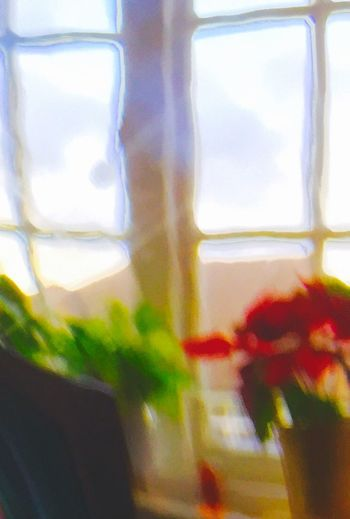 Window through glass/Impressionism/Expressionism