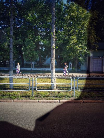 Street Street Window View City People Summer Sunny Day Summertime Walking Chelyabinsk