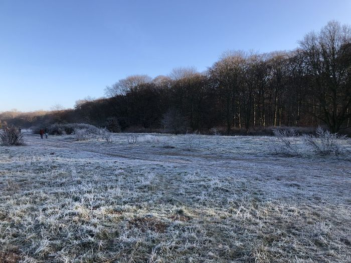 Scenic view of snowy field against clear sky