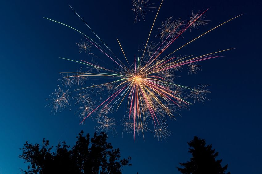EyeEm Selects Fourth Of July Low Angle View Firework Display Night Long Exposure Firework - Man Made Object Celebration Clear Sky Exploding Sky Motion Illuminated No People Multi Colored Tree Arts Culture And Entertainment Outdoors
