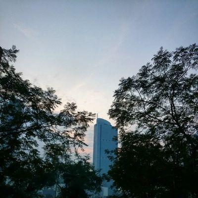 Selamat pagi Jakarta...Kamerahpgw_Kupang Kamerahpgw Sonyxperiaid Sonyxperiaz1 xtraordinarynoya