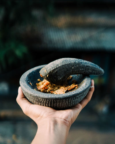 In the traditional hands of Sambal Handmade Hand In Frame Object Bokeh Background Film Photography Sambal Rempah Indonesian Food Foodies Food And Drink Human Hand Holding Hand Close-up Macaroon Cookie Sweet Food Eaten Dessert Human Finger Poppy Unrecognizable Person Personal Perspective Handful Chocolate Chip Chocolate Chip Cookie Leftovers Pastry Cutter Missing Bite