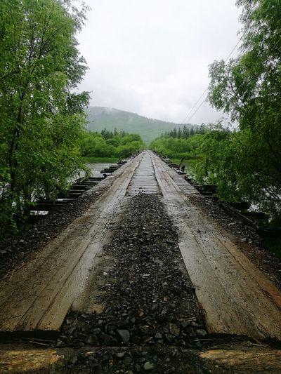 Water The Way Forward River Bridge River Tumnin Huawei P 9