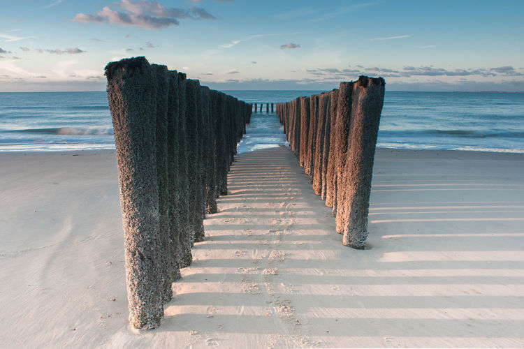 Row of wooden logs on beach