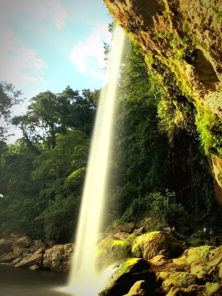 Misol-Ha Waterfall Waterfall Sky And Clouds Blue Green Color Vive Mexico Nature 2018 Fsk Rasask Tree Water Plant Motion Nature Sunlight Day Beauty In Nature Scenics - Nature Long Exposure Sky No People Flowing Water Waterfall Spraying Low Angle View Cloud - Sky Outdoors Flowing Splashing 10 EyeEmNewHere