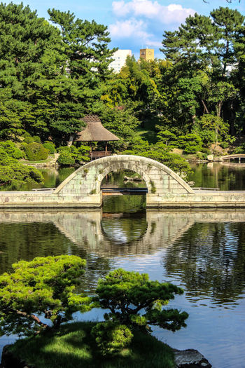 #hiroshima #japan Architecture Beauty In Nature Bridge - Man Made Structure Built Structure Connection Day Green Color Growth Nature No People Outdoors Reflection Sky Tree Water