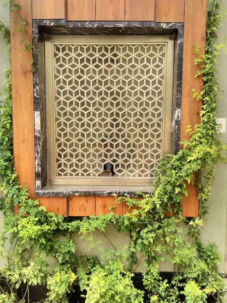 Building Exterior Architecture No People Outdoors Built Structure Metal Grate Close-up Day Incredible India Beautiful Artwork This Week On Eyeem Leaf Freshness Designs Design Art Is Everywhere Art Art Gallery Art And Craft Nature Holding High Angle View India