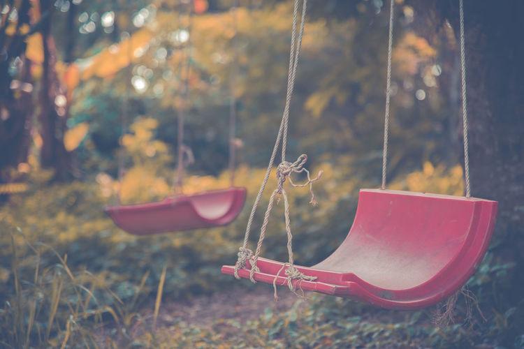 Close-up of swings at park