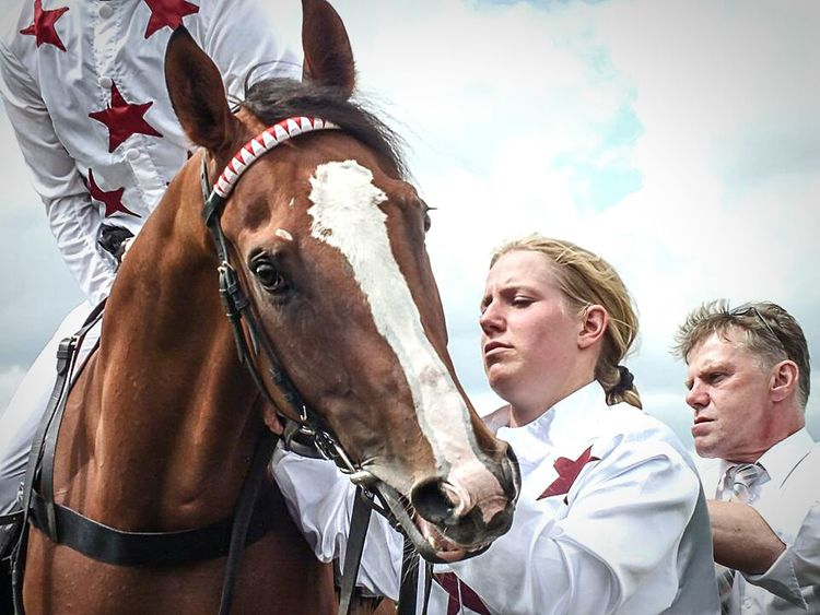 Derby Horses Galopprennbahn Horserace Faces Portrait