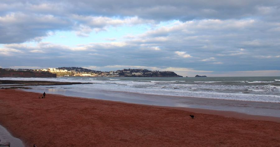 Beach Sea Sea And Sky Seaside Devon Paignton Dog United Kingdom February 2016 February Winter Beach