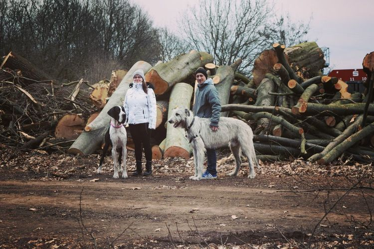 Herrenkrugpark Friendship Togetherness People Outdoors Take A Walk In The Park Great Dane March 2017 Winter 2017 Dogs Of Winter Irish Wolfhound Dogwalk Dog Of The Day Domestic Animals Cearnaigh Dogs Of EyeEm Dogslife Take A Walk Looking At Camera Portrait Spring Is In The Air Discover Your City