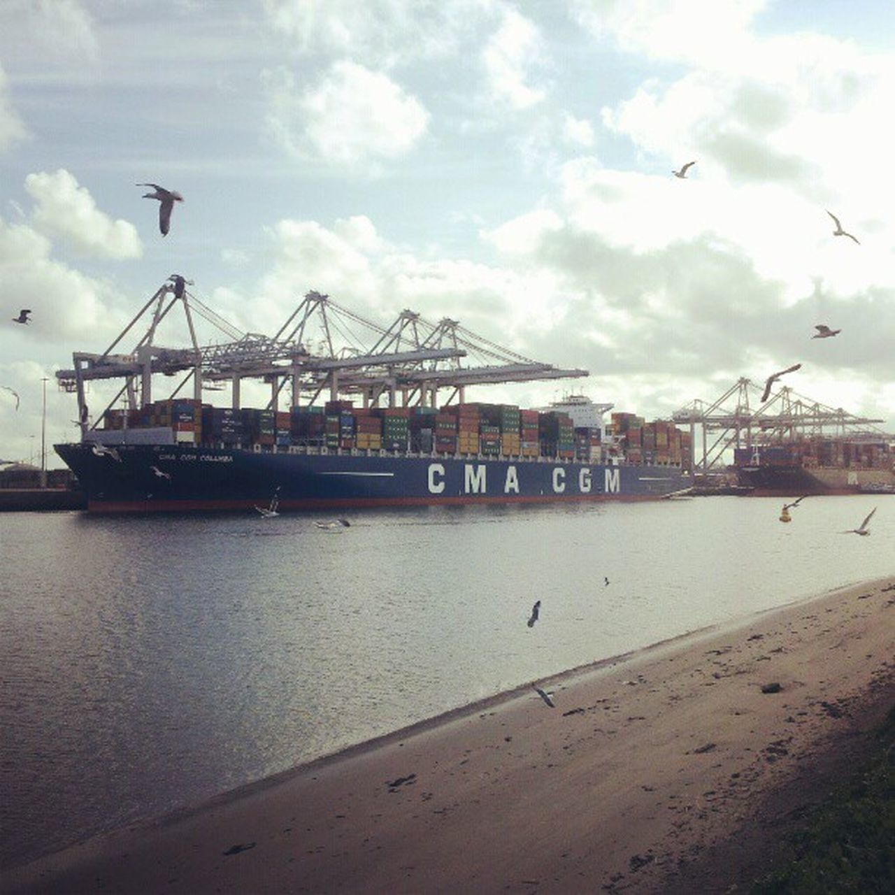 sky, sea, water, cloud - sky, freight transportation, built structure, shipping, transportation, industry, architecture, outdoors, harbor, crane - construction machinery, day, building exterior, commercial dock, nautical vessel, cargo container, no people, beach, nature, beauty in nature, city