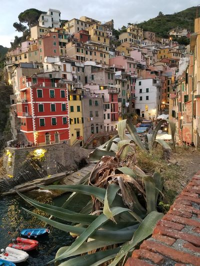 Riomaggiore Architecture Houses On A Hill Steep Incline Living Incredible Moment Enjoying Life Riomaggiori In Cinque Terra, Italy M.C. Escher Type Of Town Optical Illusion My Year My View Neighborhood Map Riomaggiore, Riomaggiori, Italy Lost In The Landscape