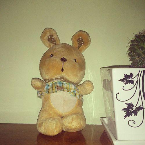 TheBear Bear Toy Cute