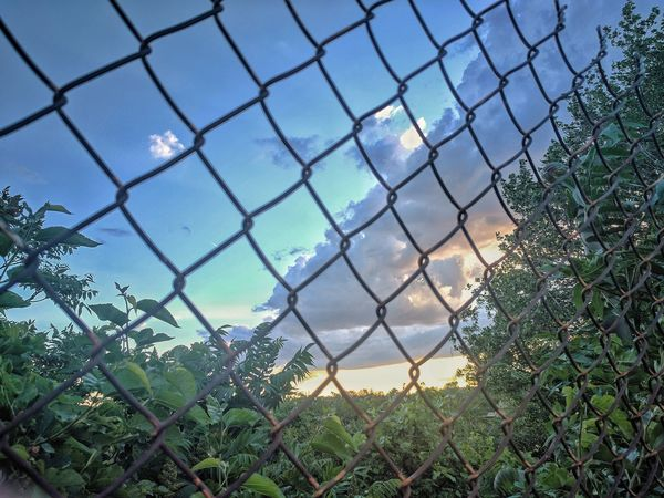 Chainlink Fence Protection Safety Metal Security Chainlink Sky No People Day Outdoors Water Pattern Nature Close-up Beauty In Nature Cleveland Freshness Landscape Tree East 34 str. Campus