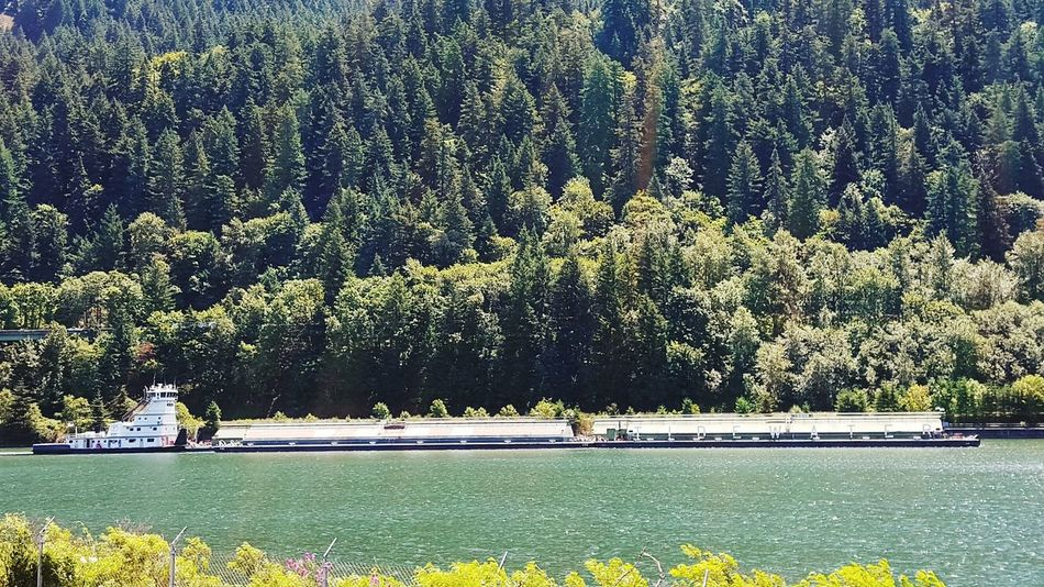 Bonneville Dam Oregon Boat Tidewater Mountains Trees Colombia River
