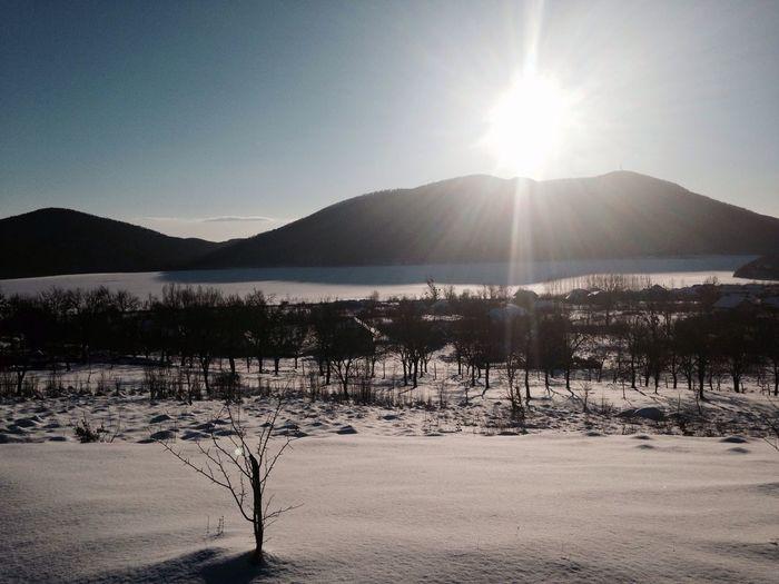 Tranquility Sun