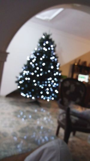 Home Christmas Indoors  Christmas Decoration No People Close-up Christmas Tree Day First Eyeem Photo Home Sweet Home Home Defocused Christmas Lights Tradition Christmas Ornament Celebration Christmas Indoors