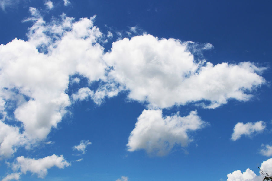 Sky Cloud Cloud - Sky Flying Blue Nature Beauty In Wallpeper Backgrounds Sky Is Blue & Clouds Are White Full Frame Fluffy White Clouds In Blue Sky