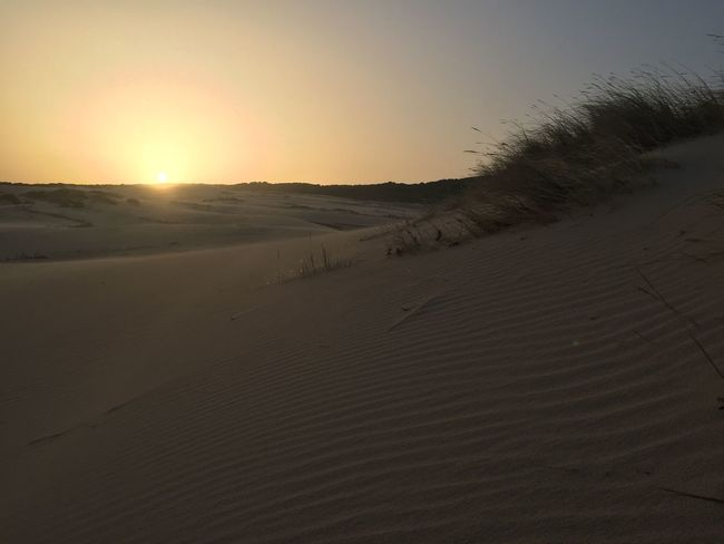 Arid Climate Beach Beauty In Nature Day Desert Dune Dunes Landscape Nature No People Outdoors Sand Sand Dune Scenics Sky Sun Sunlight Sunset Tranquil Scene Tranquility