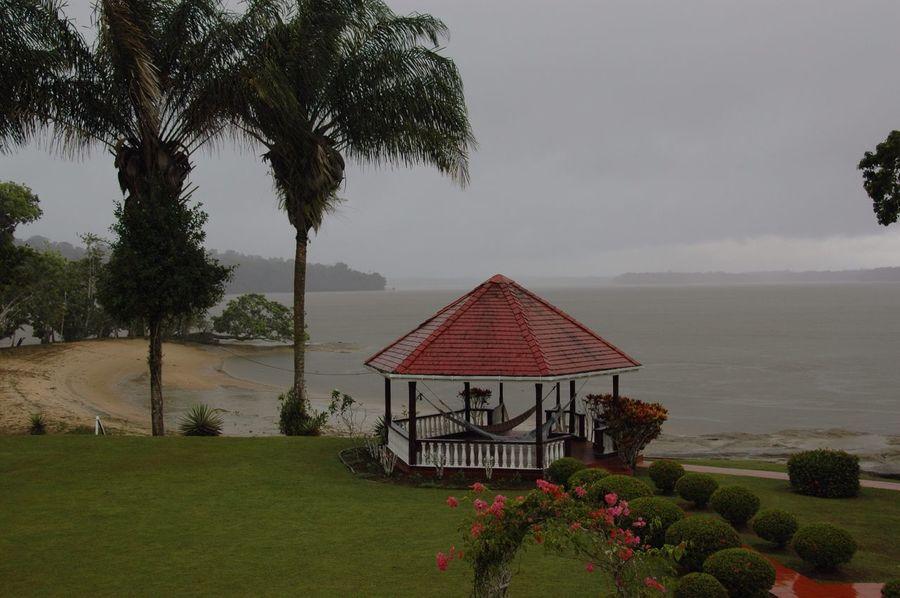 Essequibo River Rain Showers Gazebo Nature Tree Man Made Beach Bougainvillea Flower Storm Cloud Rain Island View