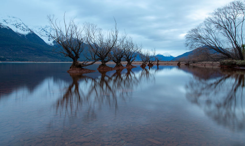 Water Sky Cloud - Sky Reflection Tranquility Lake Tree Scenics - Nature Beauty In Nature Tranquil Scene Nature Mountain Plant Bare Tree No People Waterfront Day Idyllic Glenorchy New Zealand