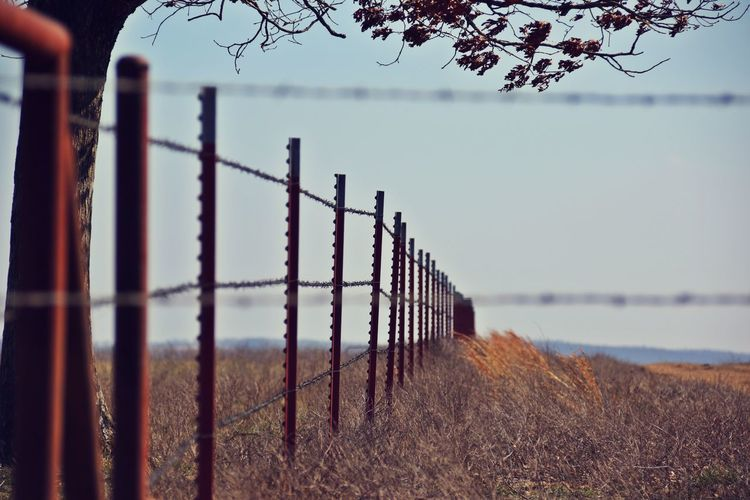 Fences Fence Safety Security Protection Boundary Barrier Sky Nature No People Outdoors