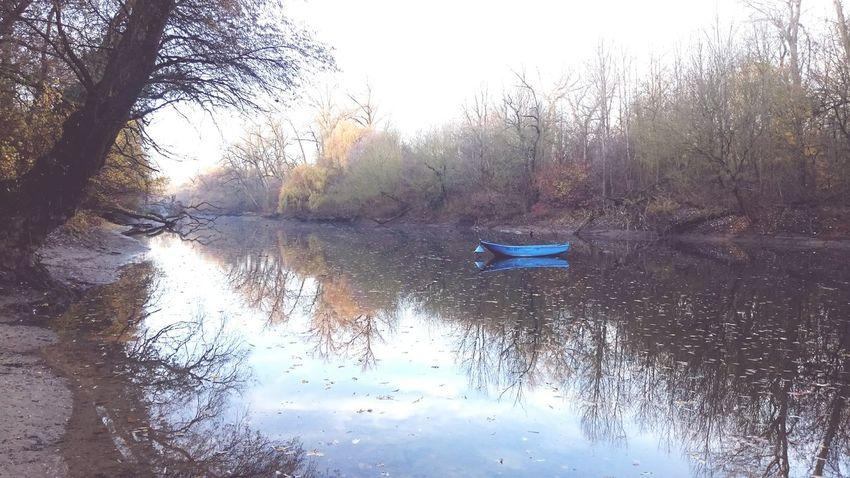 Idylle am Morgen /// Sanftes Licht erleuchtet den Altrhein an der Reisinsel in Mannheim . Der Nebel hat sich verzogen und ein neuer Tag kann anbrechen Winter Nature River Rhein Ruhe Stille Natur