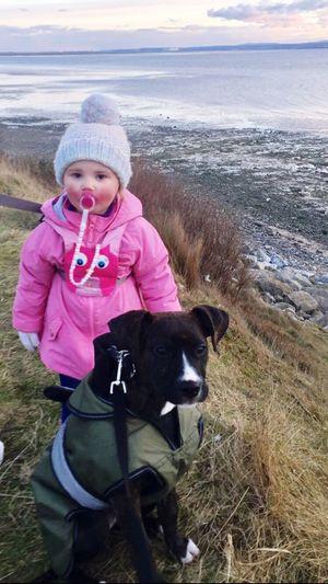 Best Friends Daughter Staffie Pup Puppy Winter Thurstaston Thurstaston Beach Winter Coats Wirral River Dee  United Kingdom Wirral Peninsula Bobble Hat
