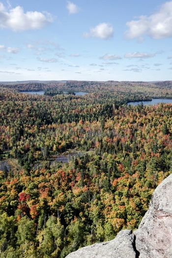 Autumn on the Superior Hiking Trail in Minnesota USA Forest Autumn Autumn colors Autumn Leaves Fall Colors Fall Leaves Fall Hiking Trail Trees Rural Scene Sky Landscape Cloud - Sky Growing Fallen Leaf Leaves