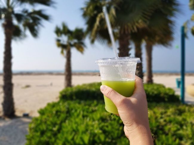 Green juice outdoors by the palm trees Healthy Drink Healthy Lifestyle Green Smoothie Green Juice Palm Tree Tree Human Hand Human Body Part Drink Real People One Person Drinking Glass Drinking Straw Green Color
