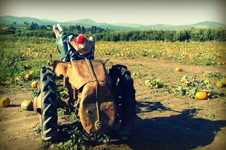 Fall Harvest Hood River, Oregon Just Enjoying The View! Pumpkin Field The Simple Life Vintage Tractor