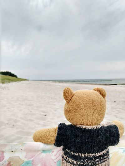 Blund endlich wieder am Meer Blund Beach Sand Sea Water Cloud - Sky Horizon Over Water No People Day Sky Relaxation Nature Outdoors Close-up Teddy Teddy Bear Bear Cuddly Toy Soft Toy Stuffed Toy Stuffed Animal Cuddly Windschutz Windbreak Windscreen