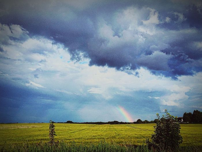 The beauty of the Denmark Countryside . Enjoying Life Rainbow Nature Easyliving Grass Relaxing Moments First Eyeem Photo