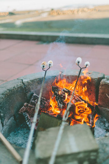 Roasting marshmallows over a fire. Fire Flame Burning Bonfire Marshmallow Roasting